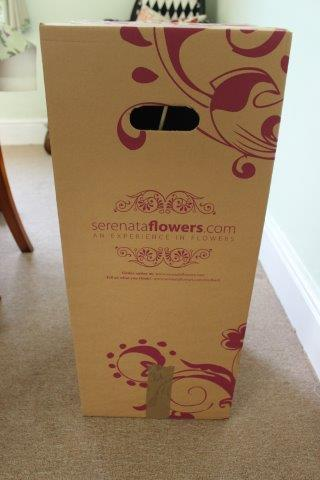 Review And Compeion Serenata Flowers